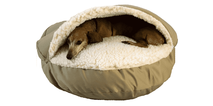 Best dog beds overview