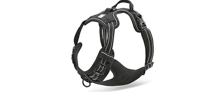 chais choice outdoor adventure dog harness