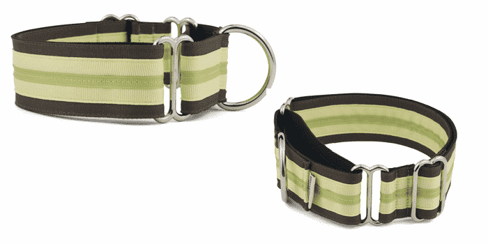 If It Barks 1.5 Martingale Collar