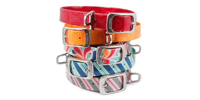 Kurgo Waterproof Dog Collar