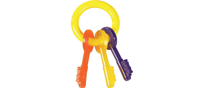 nylabone just for puppies key ring