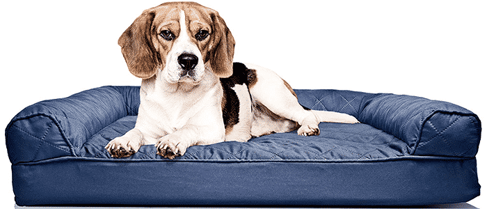 furhaven sofa-style couch pet bed for dogs cats