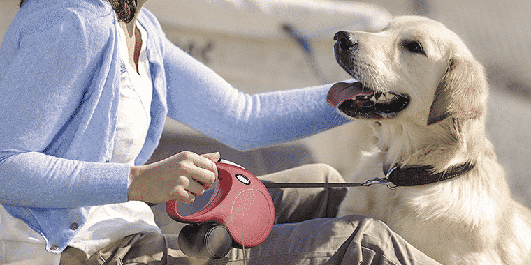 11 Best Retractable Dog Leashes in 2019