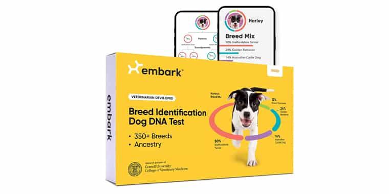 Embark Dog DNA Test Breed Identification Kit