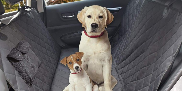 10 Best Dog Car Seat Covers in 2020