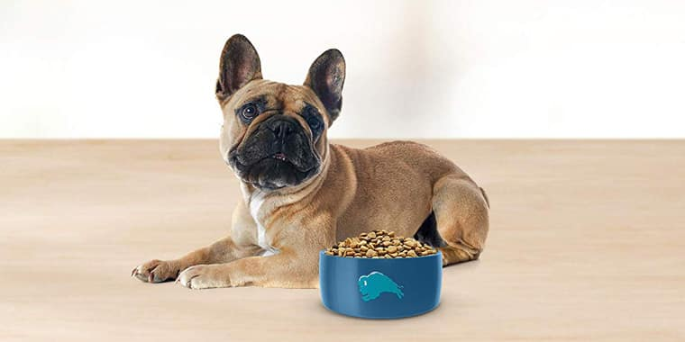 14 Best Dog Foods for Small Dogs in 2020
