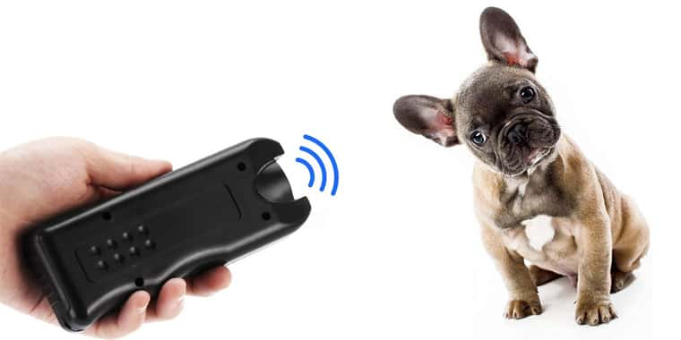 11 Best Dog Repellents and Deterrents in 2020
