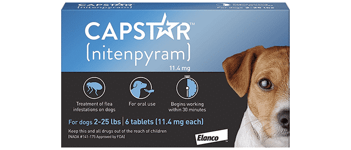 capstar fast-acting oral flea treatment for small dogs