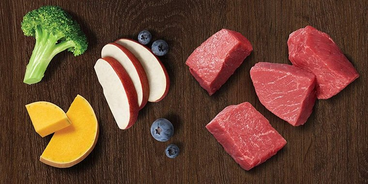 10 Best Raw Dog Foods to Choose in 2020
