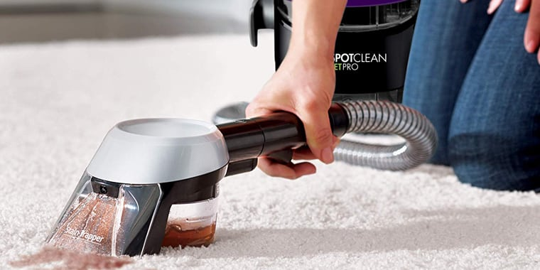 7 Best Carpet Cleaners for Pets in 2020