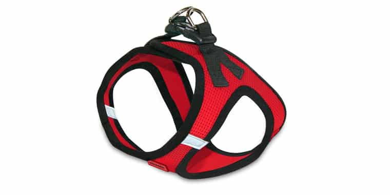 Voyager Step-in Vest Harness for Small Dogs and Cats