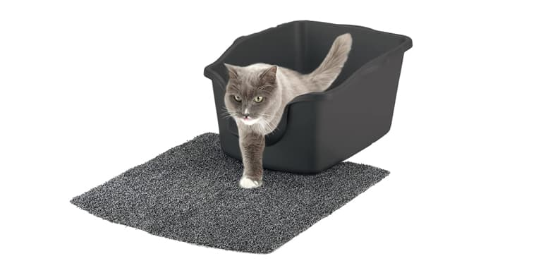 9 Best Cat Litter Boxes in 2020