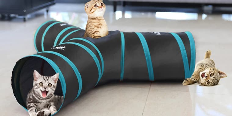 9 Best Cat Toys to Make Your Cat Happy in 2020